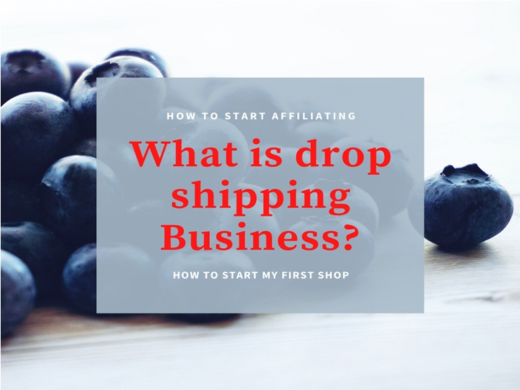 WHAT IS DROP SHIPPING BUSINESS